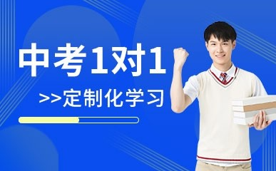 重庆中考一对一辅导班