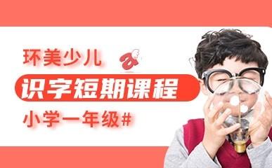 天津小学语文一年级识字短期课程