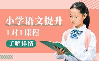 小学语文1对1名师课程